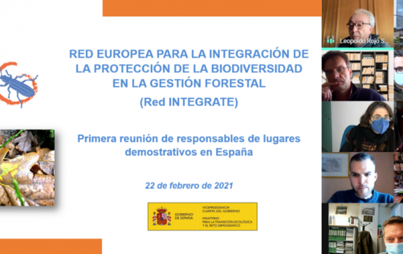 First National Meeting of Integrate Network in Spain