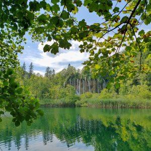 New procedures in Croatian Forest Management